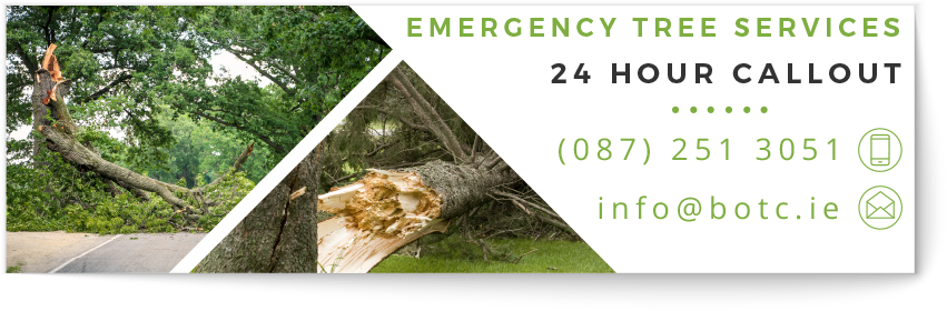 botc emergency tree repairs, 24 hour storm damage call out banner