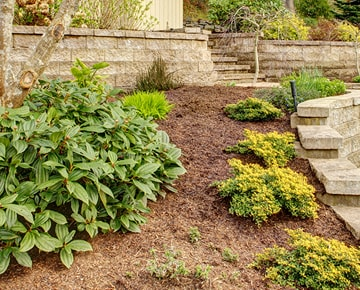 Mulching within a raised bed